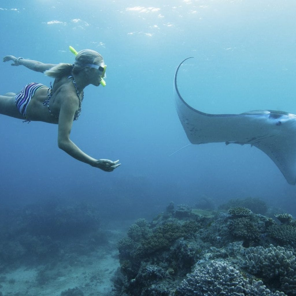 Snorkeling_avec-rae manta penida Bali Indonesie | Voyage Bali Indonésie en Circuit Privé avec Guide Francophone