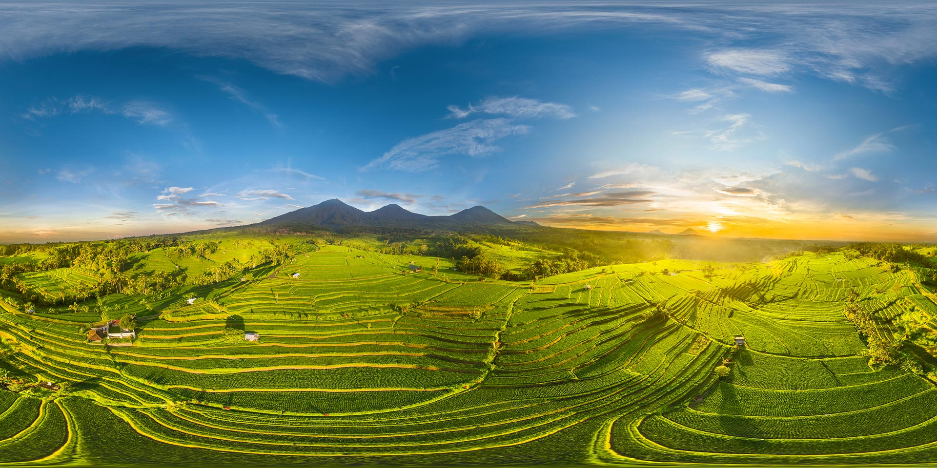 les rizières de Jatiluwih | Voyage Bali Indonésie en Circuit Privé avec Guide Francophone